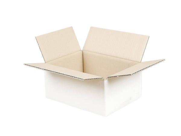 Faltkarton 200x150x100 mm weiß (2-wellig)
